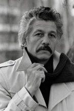 Михай Волонтир (Mihai Volontir)